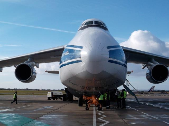 Antonov takes the limelight